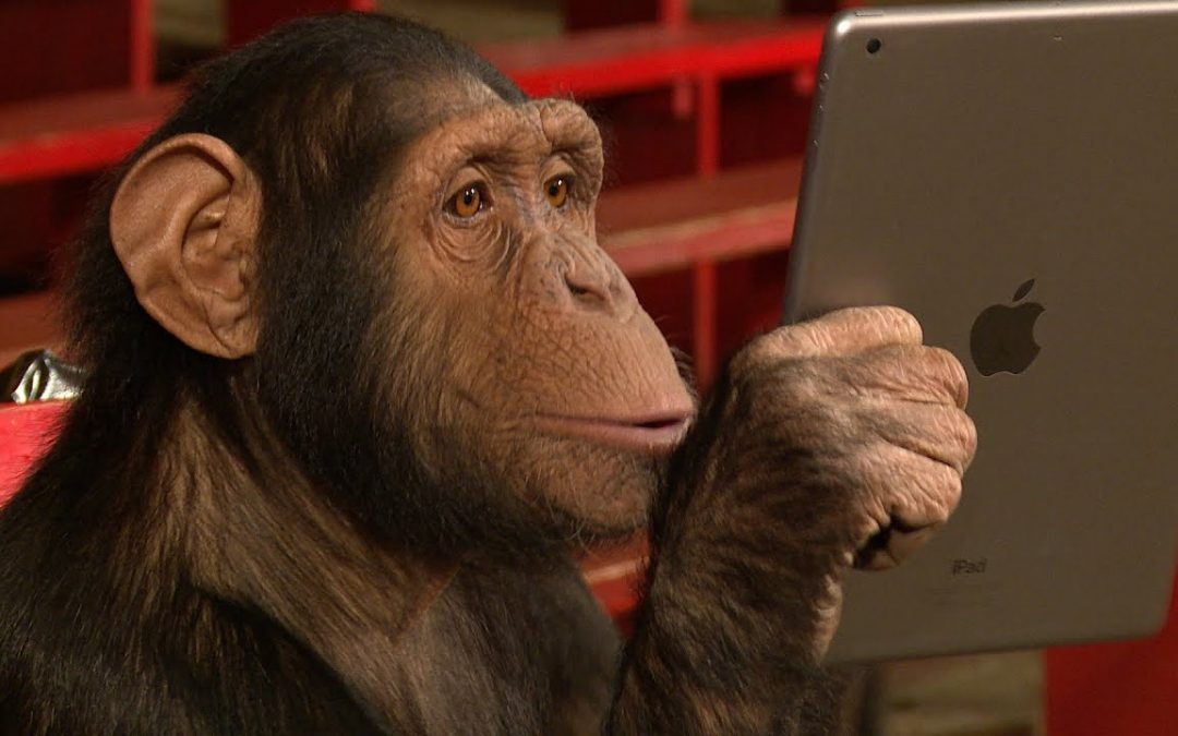 How a monkey filtered my social network for quality relationships
